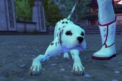 Cachorrinho Malhado - WesleyHP (2)