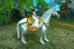 Cavalo-Bai-Long-WesleyHP-1