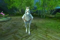 Cavalo-Bai-Long-WesleyHP-2