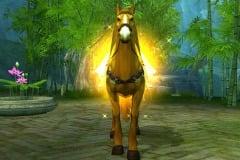 Cavalo-Dourado-WesleyHP-2