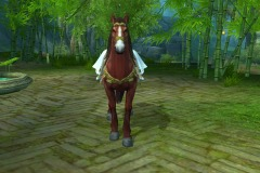 Cavalo-Vermelho-do-Vento-WesleyHP-2
