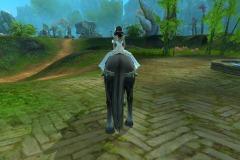Cavalo-Wuzhui-da-Tempestade-WesleyHP-4