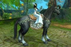 Cavalo-Wuzhui-do-Vento-WesleyHP-1