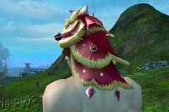 Chapéu do Leão Divino - Masculino (3)