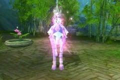 Cosmos-Púrpura-WesleyHP-2