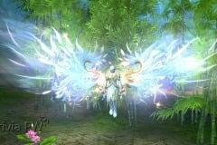 Dança-da-Energia-Celestial-WesleyHP-2