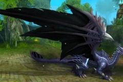 Dragão-de-Guerra-WesleyHP-1