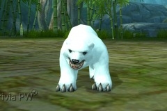 Filhote-de-Urso-WesleyHP-2