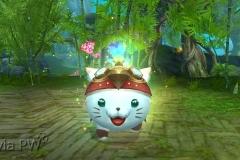 Gato-Espírito-da-Neve-WesleyHP-2