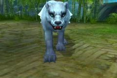 Jaguar-Branco-WesleyHP-2