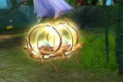 Lotus-Mistico-WesleyHP-3