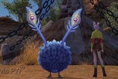 Mascote-Pássaro-Bob-WesleyHP-4