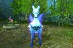 Raposa-Púrpura-WesleyHP-2