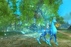 Rena-Espiritual-Azul-Piscina-WesleyHP-1