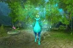 Rena-Espiritual-Jade-WesleyHP-2