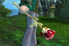 Rosa da Tentação - WesleyHP (1)