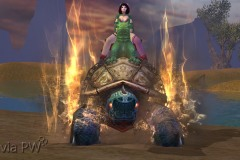 Tartaruga-Dragão-Imperial-WesleyHP-2